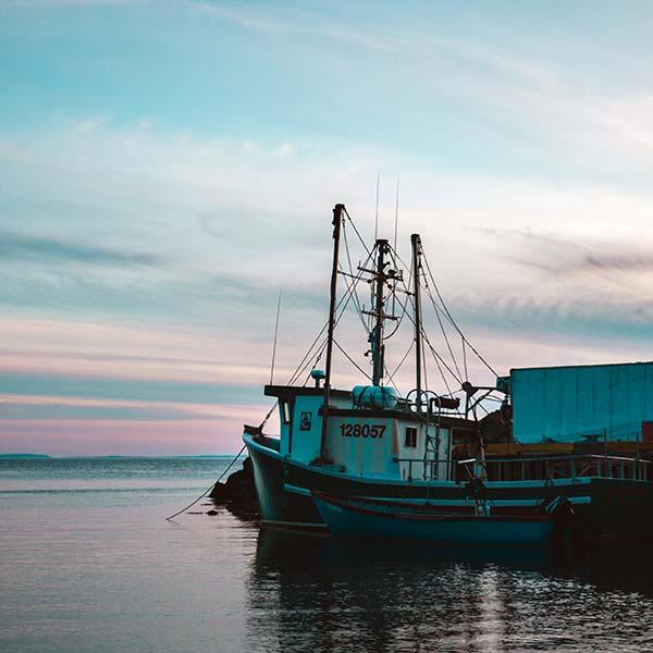 fishing vessel audits
